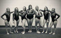 RCHS Gymnastics Team