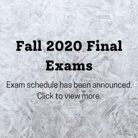 Fall 2020: Final Exam Information