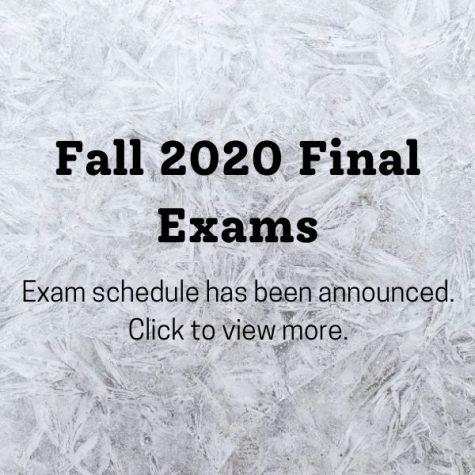 Fall 2020: Final Exam Information