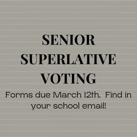 Senior Superlative Voting